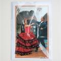 Spaanse flamenco 1